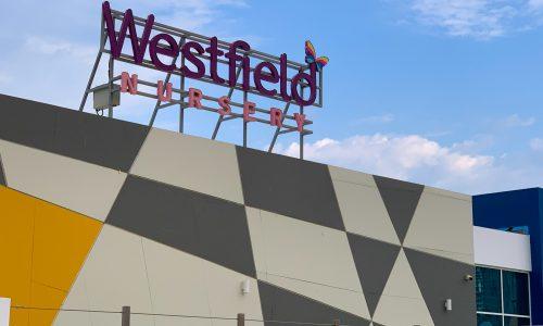 Westfield-Nursery-Near-CityWalk-Al-Wasl